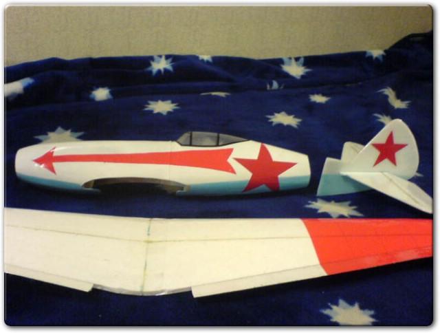 почти гототвая модель самолета бутылочника