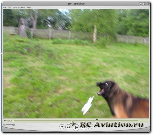 Атака самолета собакой
